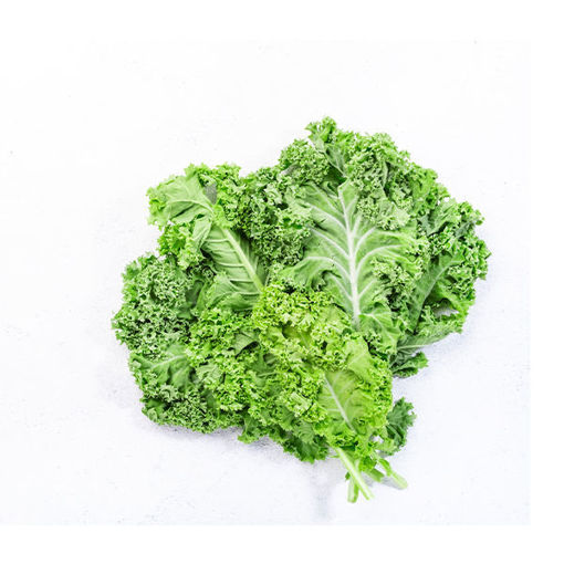 Picture of Kale Green