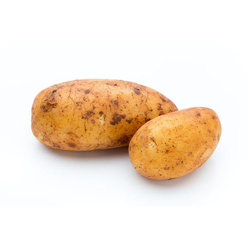Picture of Potato Russet
