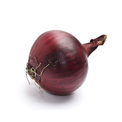 Picture of Onion Red