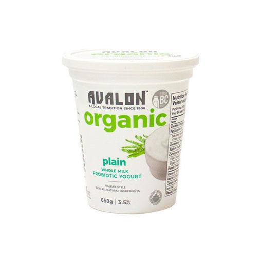 Picture of Yogurt Plain